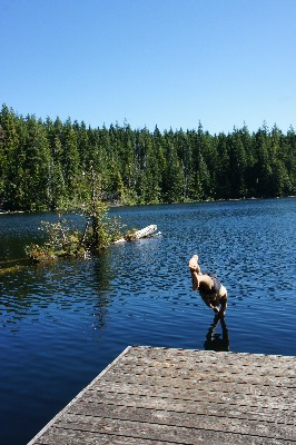 Swimming in Lizard Lake
