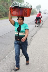 Typical site on the roads in Guatemala