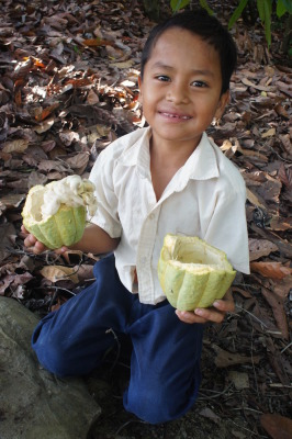 Nehimiah with the cacao he opened for us
