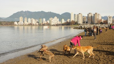 Vancouvers Secret Beach: Exploring Close to Home