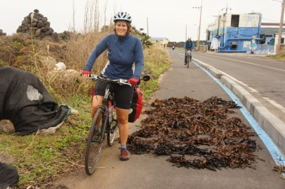 Seaweed on the bike path