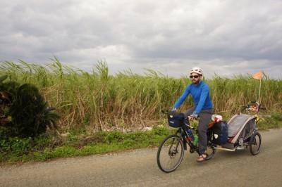 Sugar canes, Okianarabu Island