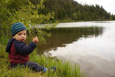 Alison Lake - throwing rocks and sticks